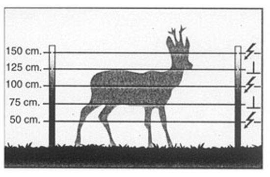 Ejemplo cercado eléctrico para ciervos - Pastorelectrico.com