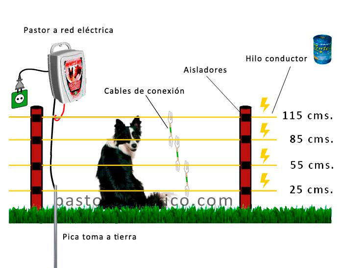 circuito pastor eléctrico para perros grandes y medianos