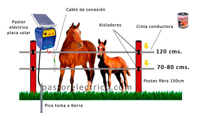 cercado eléctrico para caballos y potros