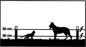 Cercado para perros y gatos - Pastorelectrico.com