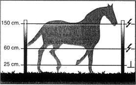 Cercado para caballos- Pastorelectrico.com