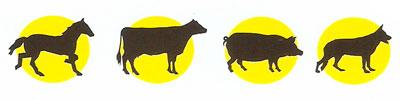 Comprobar pastor electrico animales dóciles