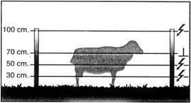 Cercado para cabras y ovejas- Pastorelectrico.com